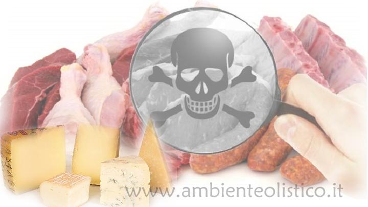 Proteine Animali e Osteoporosi
